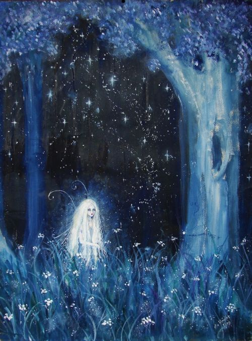 Fae At Night Fantasy Fae Blue White Check Out My