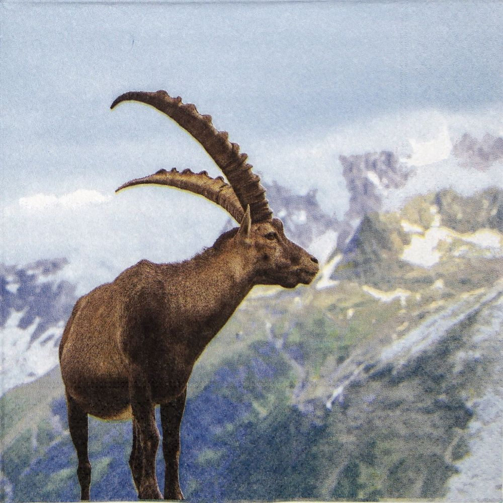 Paper Napkin - Capricorn   Napkin Shop   Alpine ibex, Ibex ...