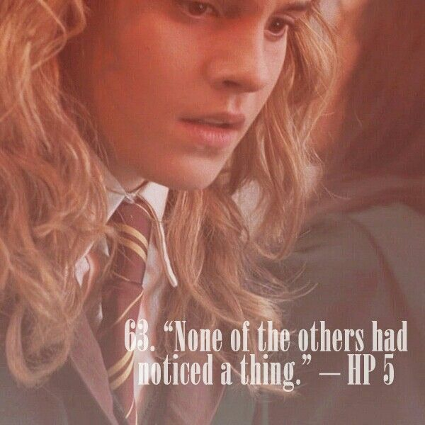 """63. """"None of the others had noticed a thing"""".   101 reasons to ship Harry and Hermione."""