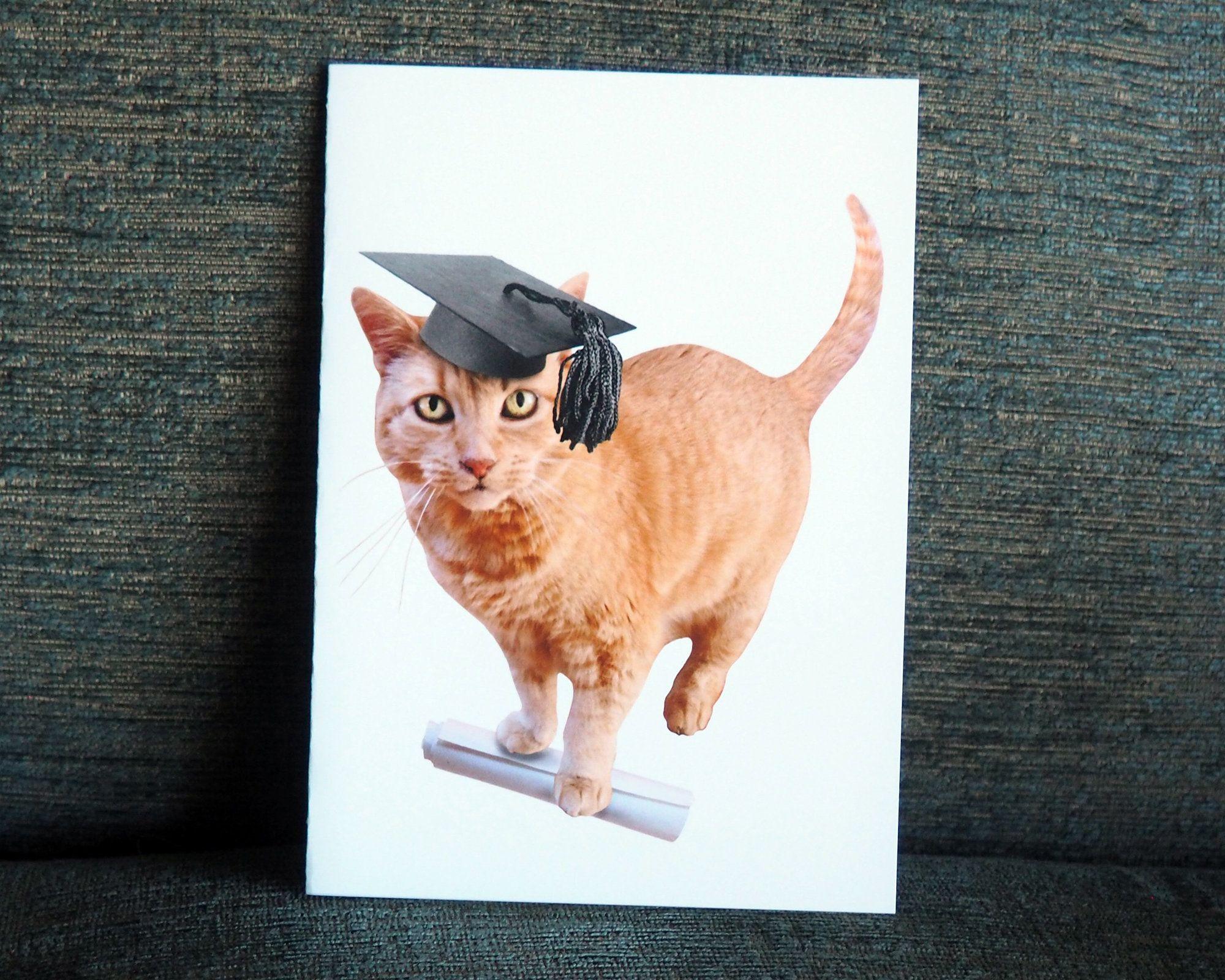 Orange Cat Grad Printable Graduation Card Etsy In 2020 Graduation Cards Orange Cat Glitter Cards