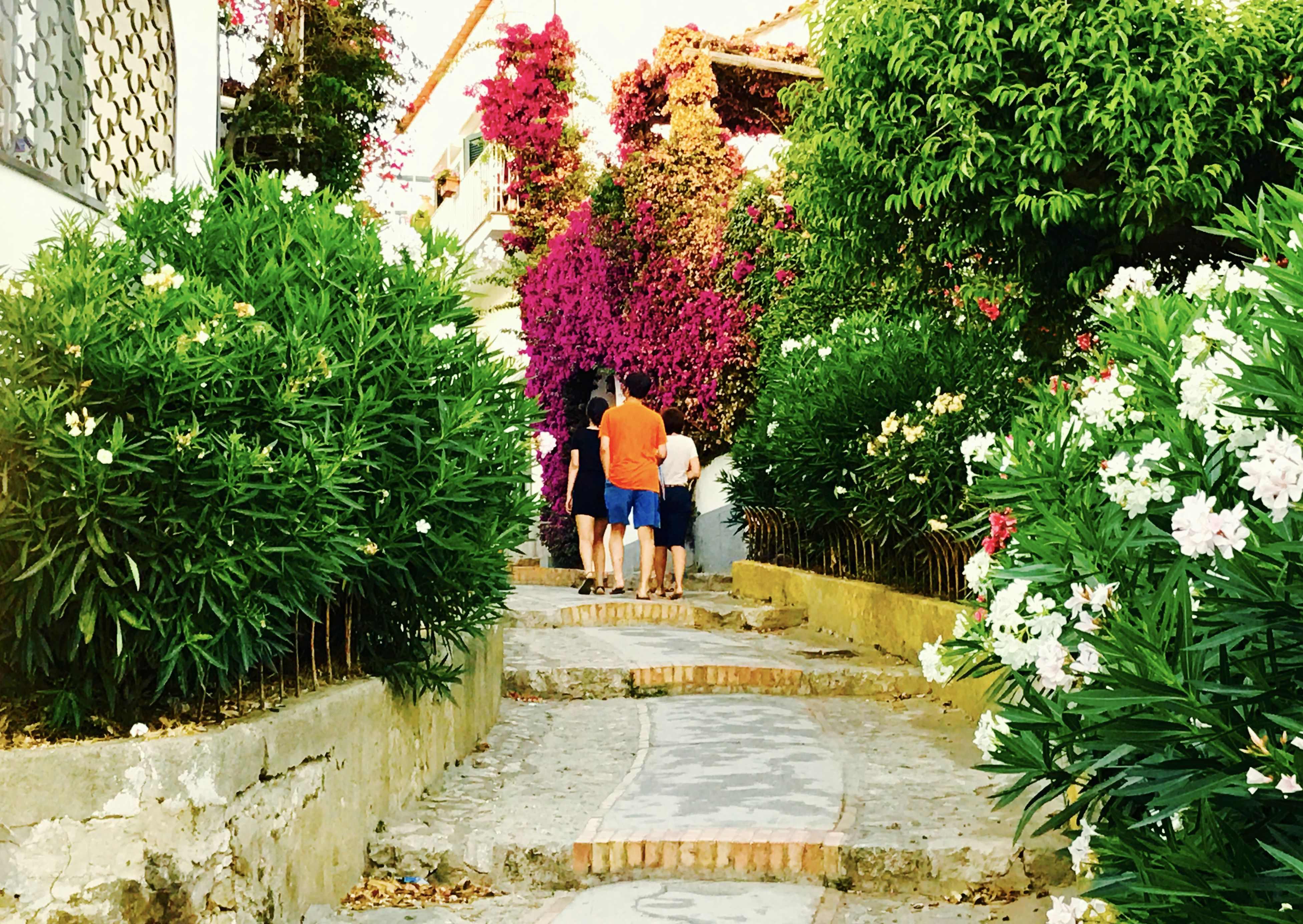 A stroll around Anacapri, stage 2. That's what you get as you step outside cozy hotel Senaria. Flowers and a beautiful light, no matter what the weather's like. Enjoy your tour around picturesque Anacapri town. Visit our blog, www.anacapricity.wordpress.com. Stay tuned!!!