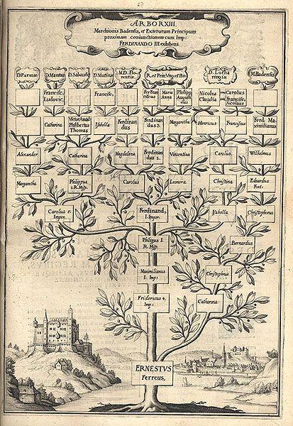 Stammbaum | American history | Pinterest | Stammbaum, Ahnenforschung ...