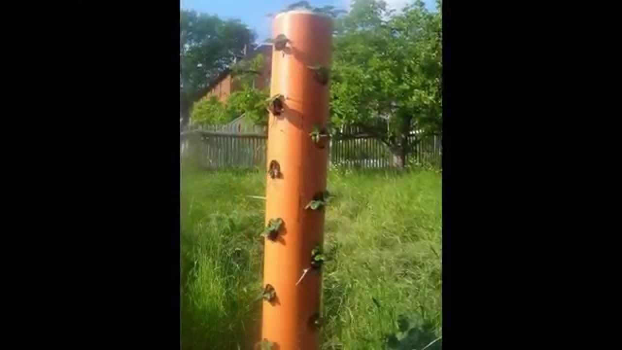Vertikal Gärten vertikaler garten vertikale blumenrohre garten vertical