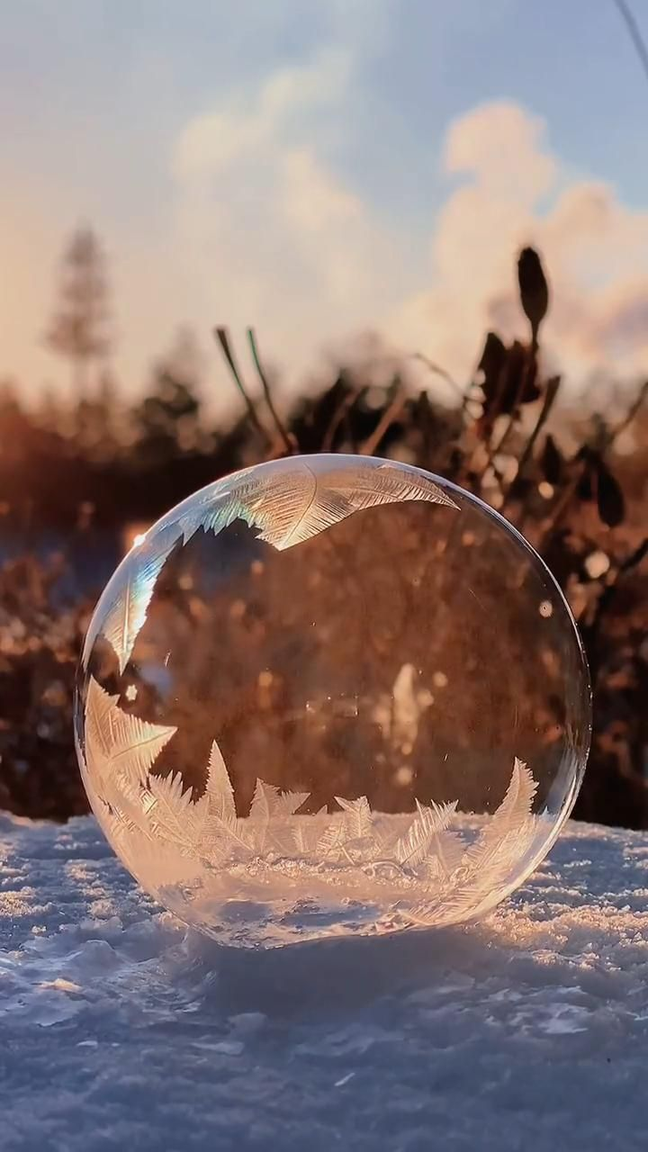 fabulous snow world