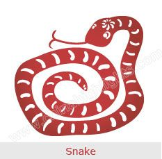 Year Of The Snake Chinese Zodiac Signs Chinese Zodiac Snake