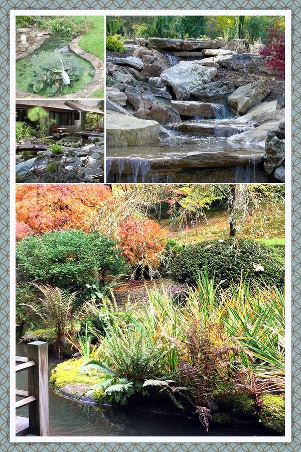 How To Design A Backyard Pond In 2020 Ponds Backyard Pond Landscaping Backyard