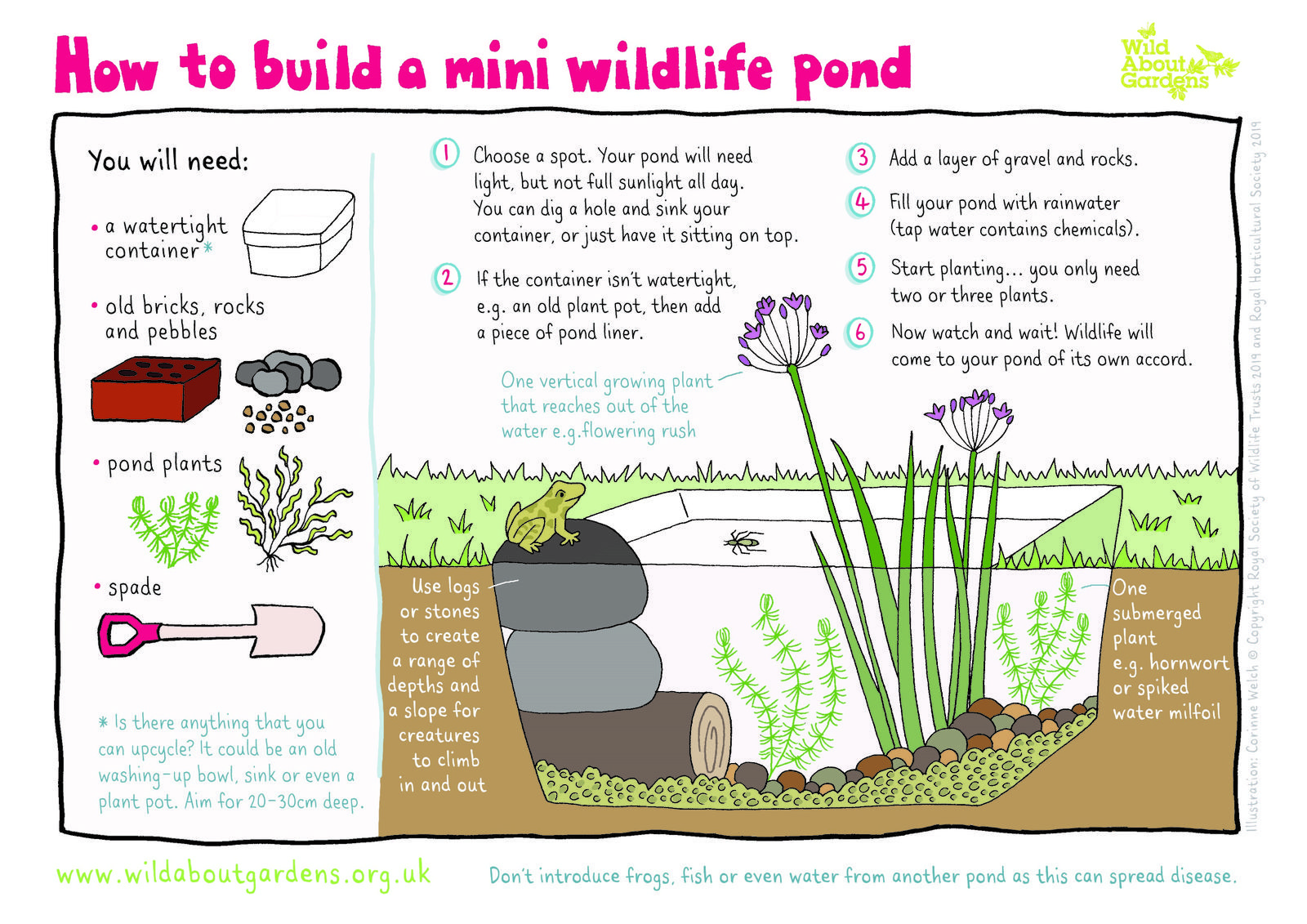 How To Build A Pond In Your Garden From Large Ponds To Container Ponds In 2020 Container Pond Building A Pond Mini Pond