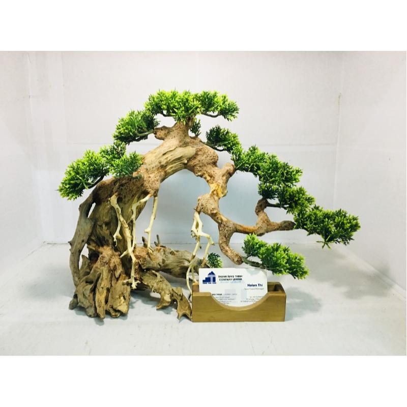 Bonsai Driftwood For Wholesale Bonsai Aquarium Driftwood Driftwood For Sale
