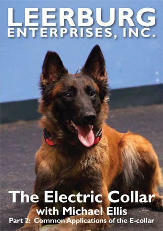 E Collar Training Video Featuring Michael Ellis Part 2 Dvd Dog