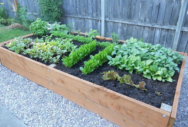 Large Raised Garden Planter From The Page How To B Uild A
