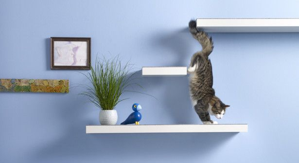fabriquer un arbre chat avec des tag res chat diy. Black Bedroom Furniture Sets. Home Design Ideas