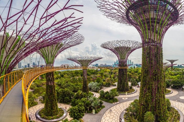 9cf8c50cf12a3f875ed1d12e179ae47c - Dining At Canopy Gardens By The Bay