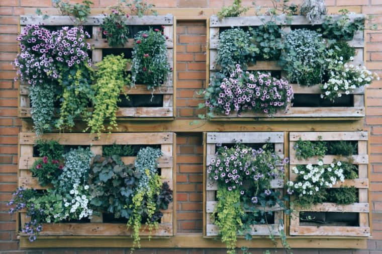 jardin vertical casero jardines verticales caseros aprende a dise arlos y mantenerlos originales ideas originales ideas