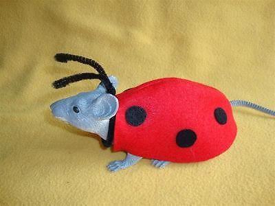 Ladybug Costume for Rat & R.A.T.S. Ladybug Costume for Rat | Pinterest | Ladybug costume Rats ...