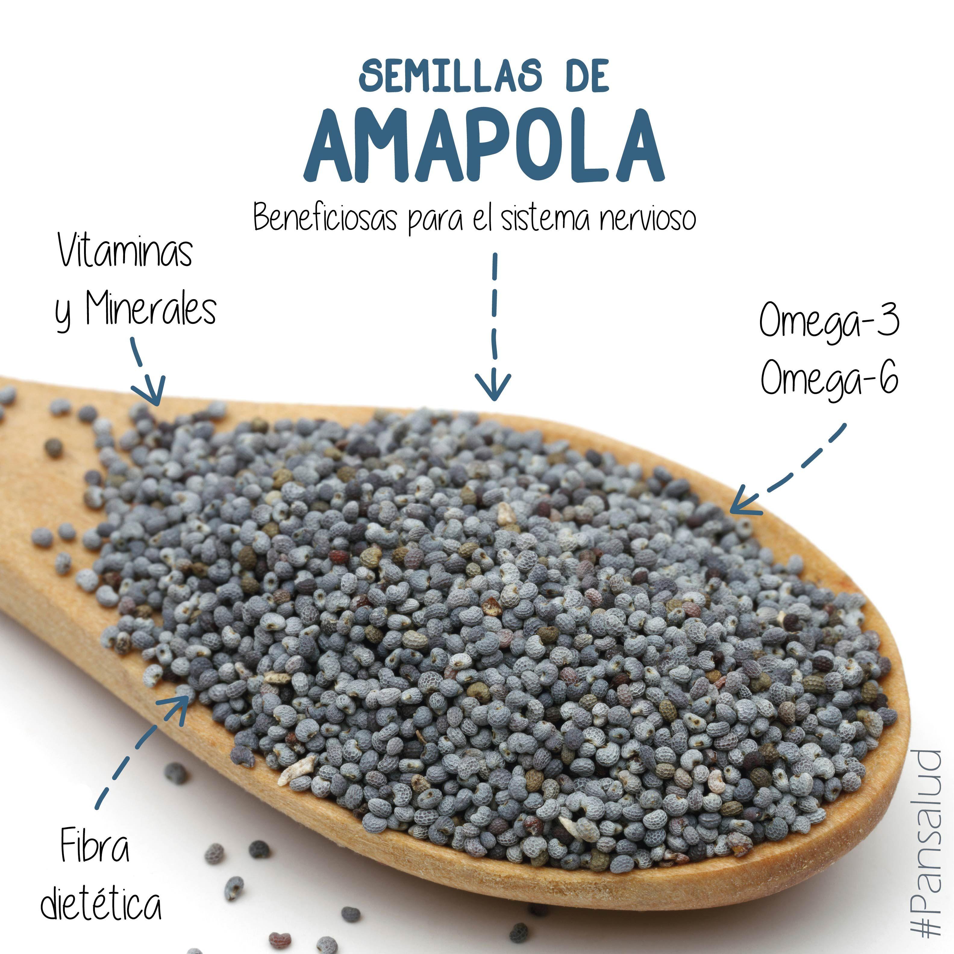 semillas de amapola beneficios
