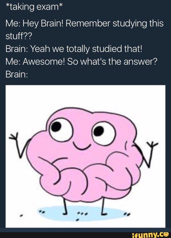 "*taking exam"" Me Hey Brain! Remember studying this stuff"