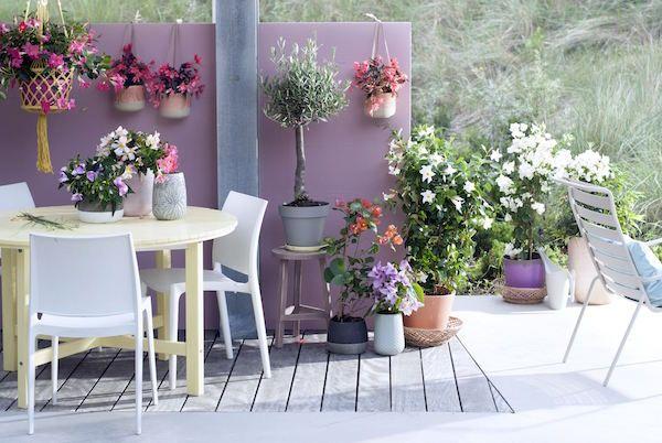 Het terras in balans - tuintrend