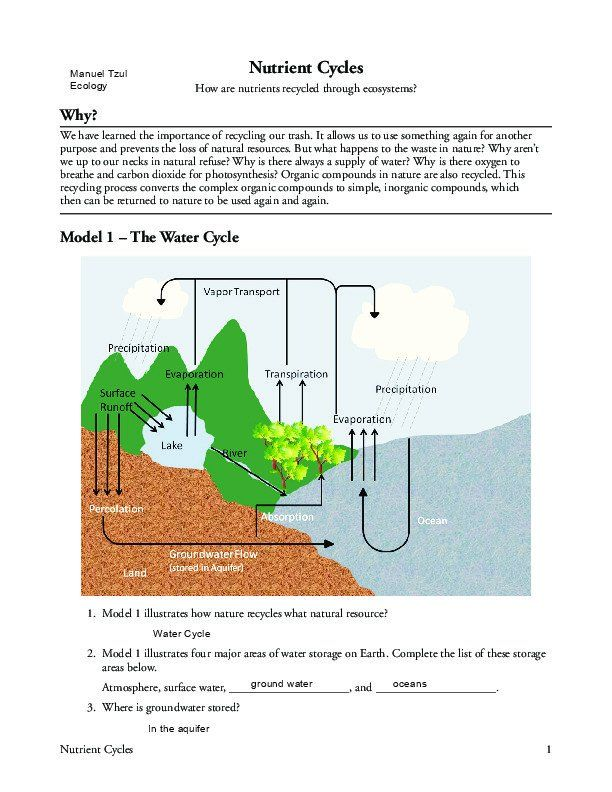 Nutrient Cycles Worksheet Answers  Nitrogen Cycle ...