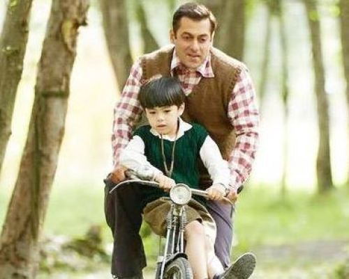 Tubelight 25th Day Box Office Collection