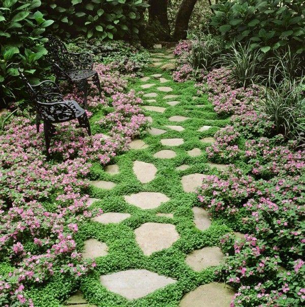 pflasterfugen begr nen top 10 pflanzen die daf r perfekt sind garten pflanzen pinterest. Black Bedroom Furniture Sets. Home Design Ideas