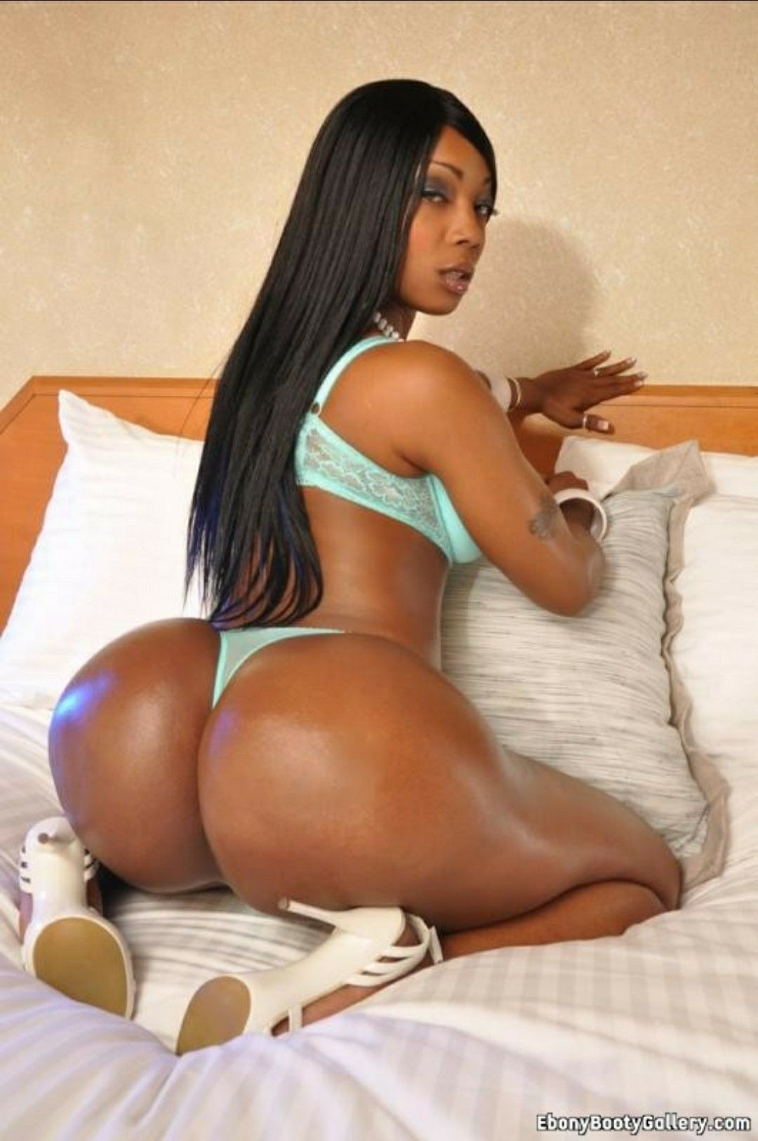 Big Black Ass Back Shots