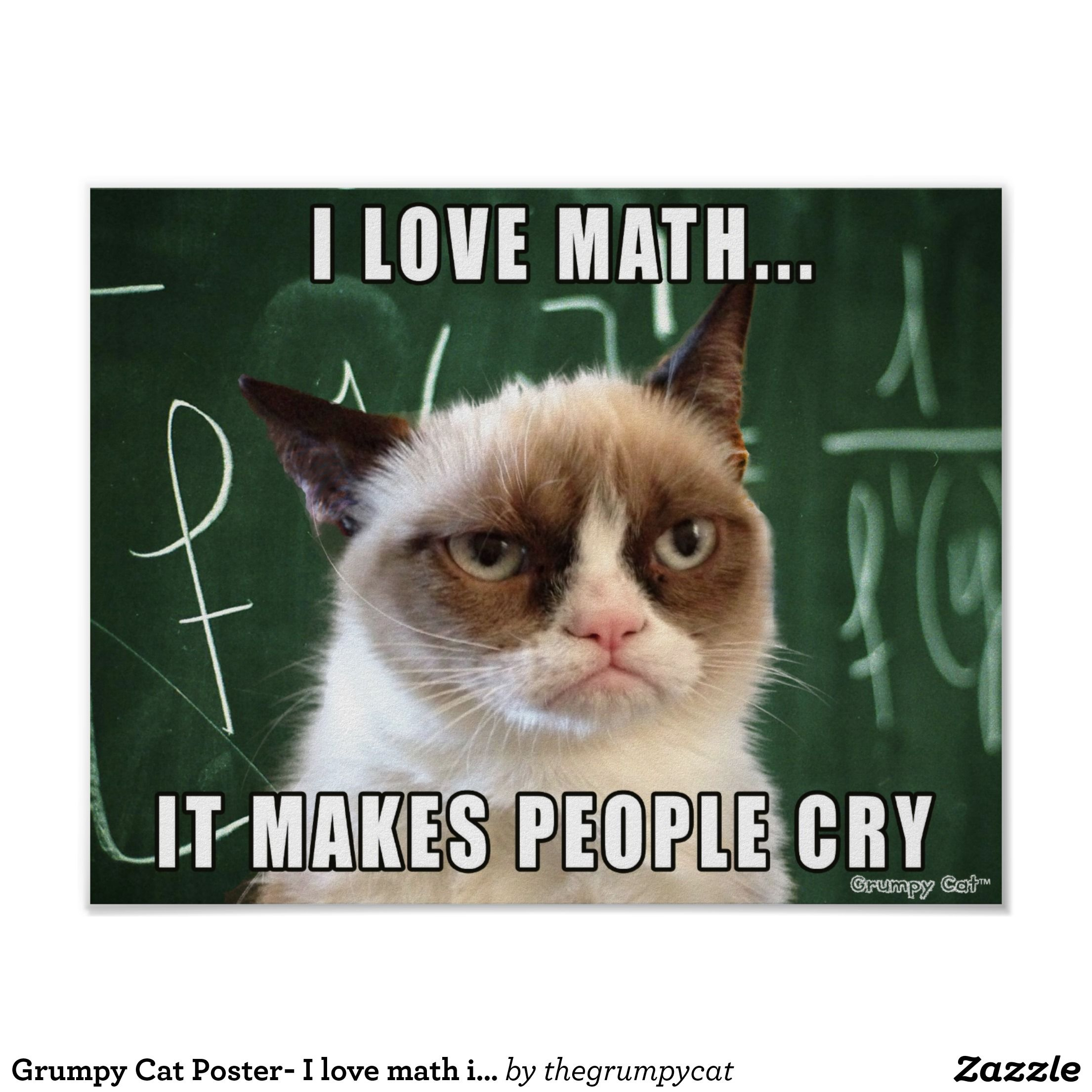Grumpy Cat Grumpy Cat Poster I Love Math It Makes