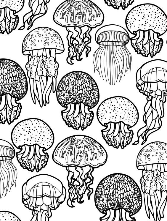ocean themed coloring pages for adults to color pic | colouring ...