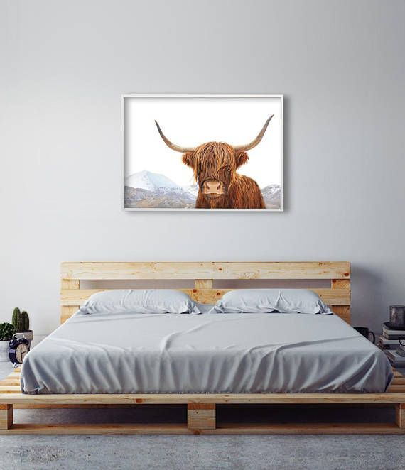 Highland Cow Art Print | Home Decor Cow Photography | Above Bed ...