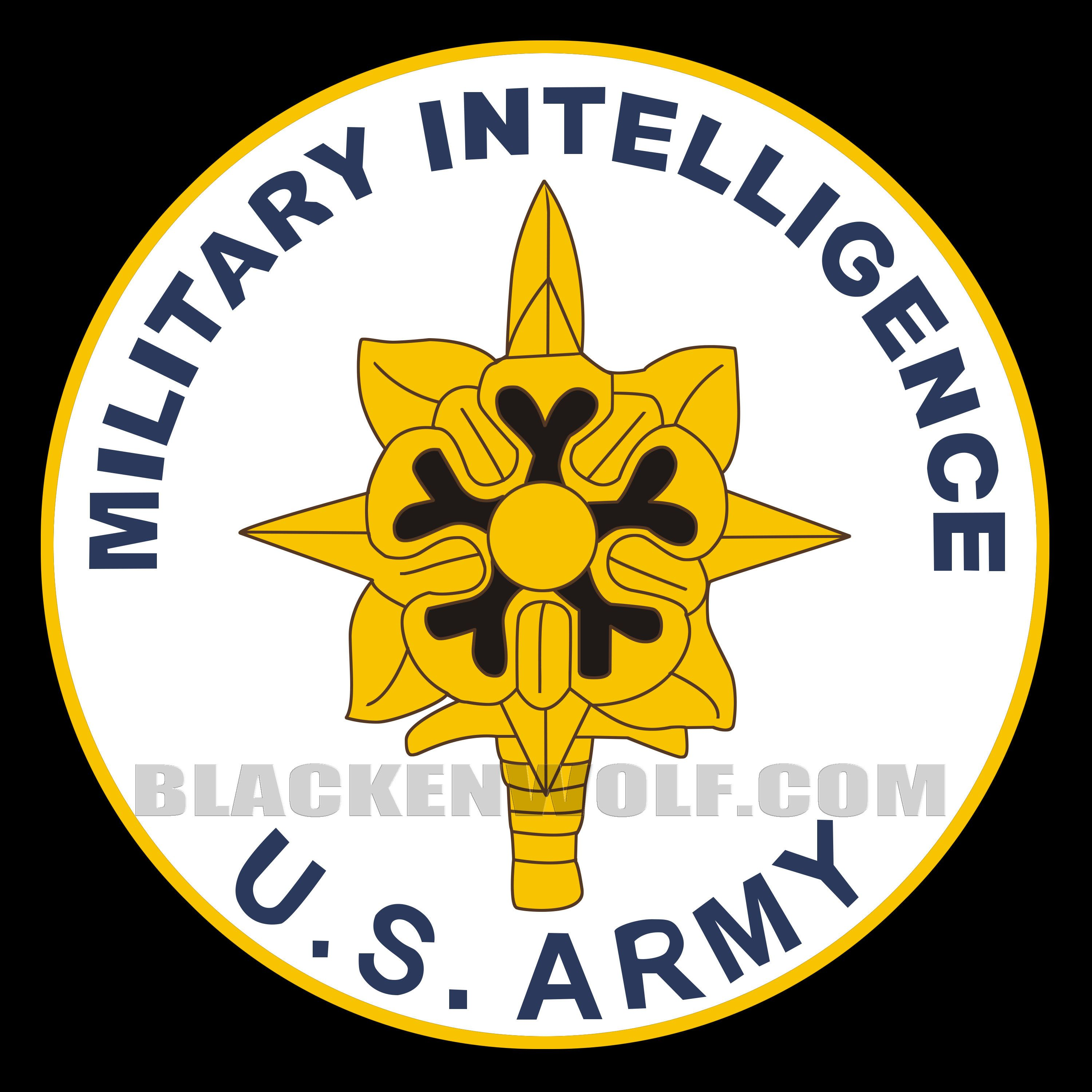 Military Intelligence (MI) US Army- Logo Lights for Auto or Cycles ...