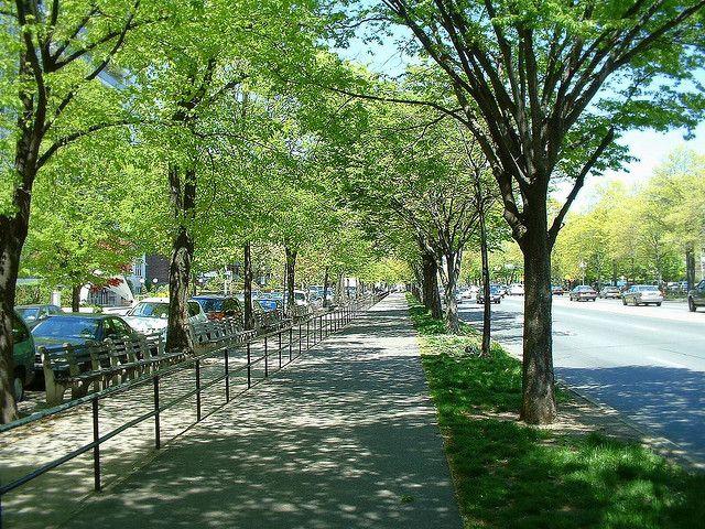 The 6 Best Bike Rides In And Around New York City Bike Ride