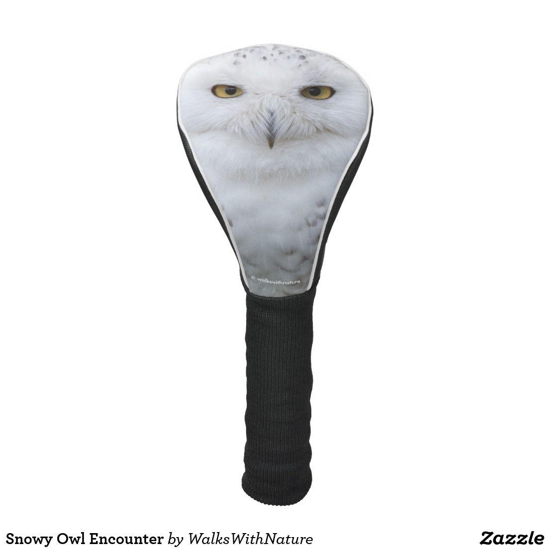 black owl golf