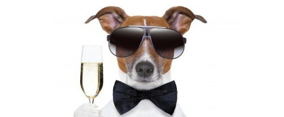 Global Champagne'Day 2013