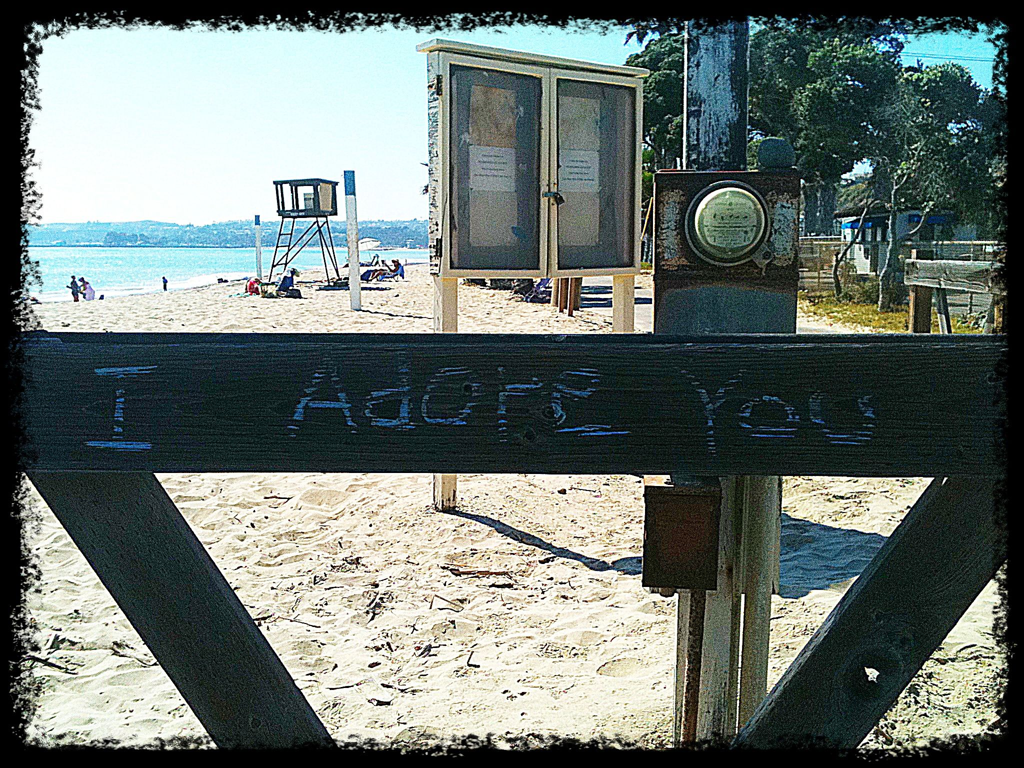 I was walking one day and this was written on the fence at the beach <3 i loved it!!