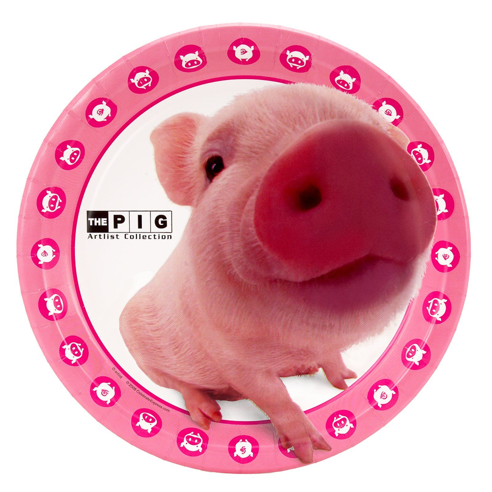 THE PIG Dinner Plates ~Don\u0027t know why but I think these are cute  sc 1 st  Pinterest & THE PIG Dinner Plates ~Don\u0027t know why but I think these are cute ...