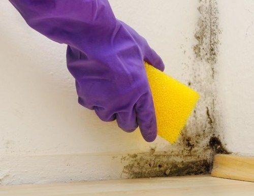 schimmel in der dusche pinterest schimmel beseitigen schimmel und alkohol. Black Bedroom Furniture Sets. Home Design Ideas