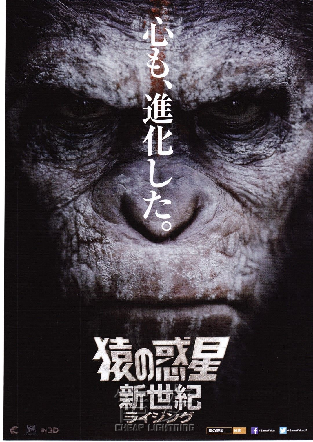 Dawn Of The Planet Planet Of The Apes Japan Movie Poster
