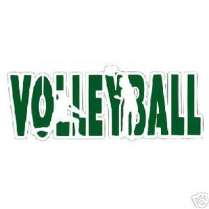 Green White Volleyball Logo Word Volleyball Logos