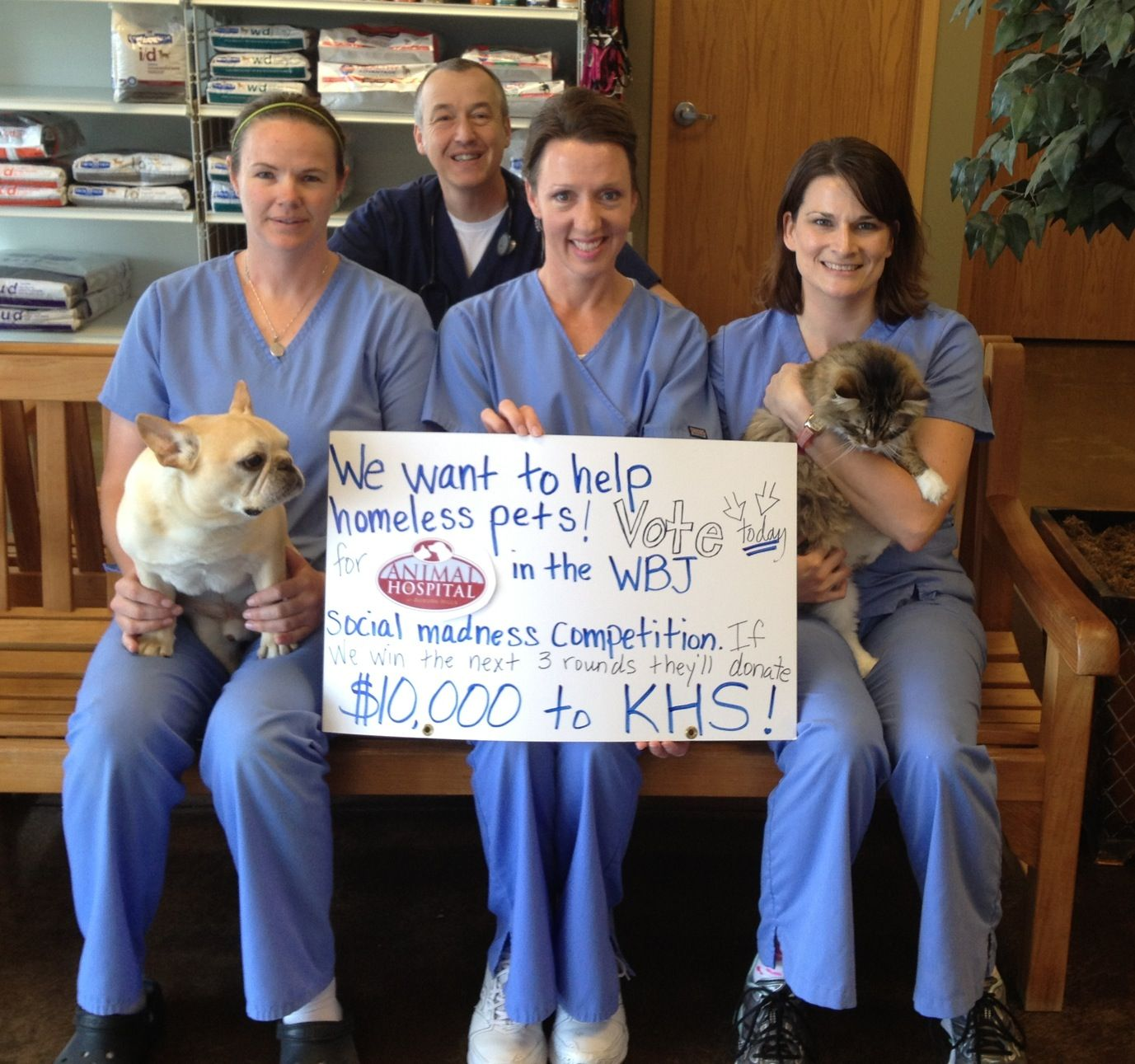 14++ Auburn hills animal hospital images