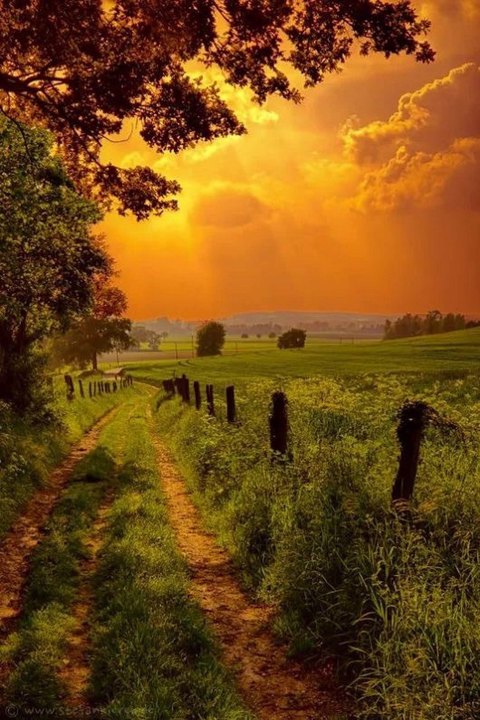 sign in | naturbilder, landschaftsbilder, naturfotografie