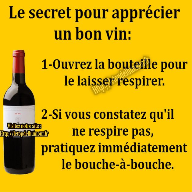 vin bouteille respirer humour drole blague humour pinterest humour dr le respire et humour. Black Bedroom Furniture Sets. Home Design Ideas