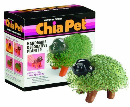 Chia Pet Handmade Decorative Planter, Puppy, 1 Kit by Chia. $15.00. Full coat in 1-2 weeks. Easy to do, fun to grow!. Contains: handmade pottery planter; Chia seed packet for 3 plantings; convenient plastic drip tray; planting and care instruction sheet.. Save 34%!