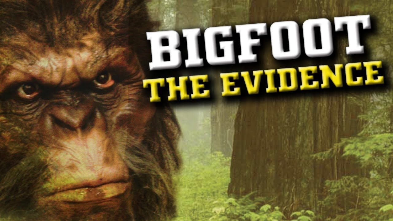 Brenda Harris Bigfoot Wwwtollebildcom