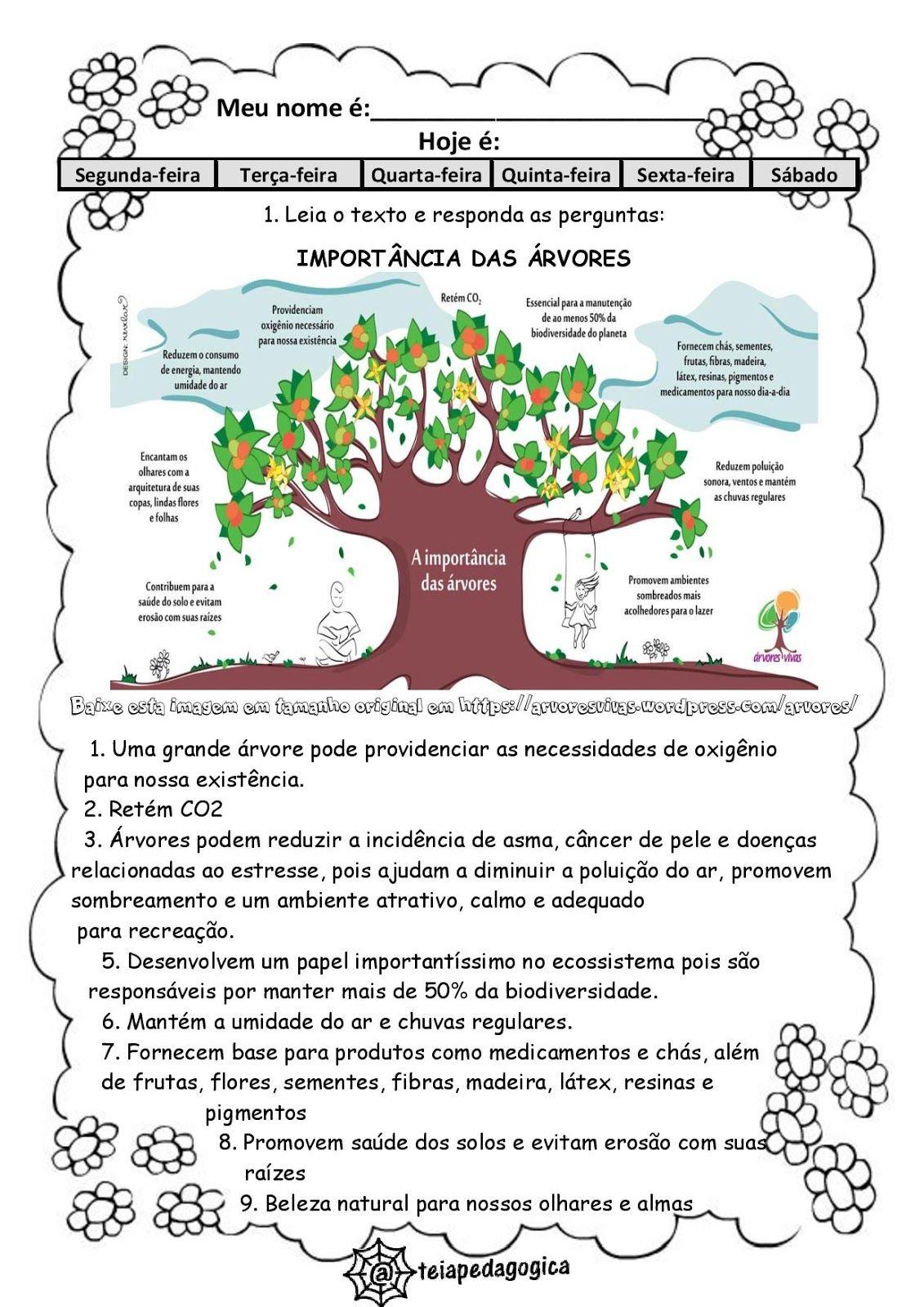 Teia Pedagogica Dia Da Arvore Dia Da Arvore Atividades Arvore