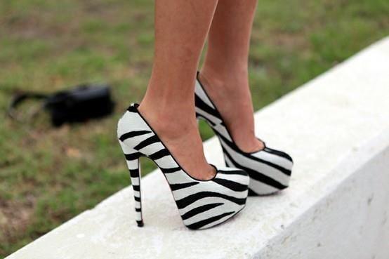 Gotta love zebra shoes