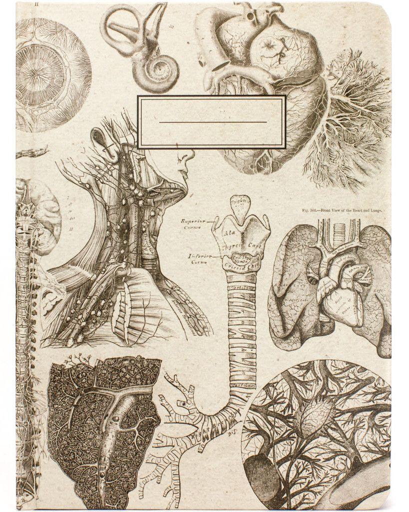 Anatomy Vintage Hardcover Journal Cognitive Surplus Gravure