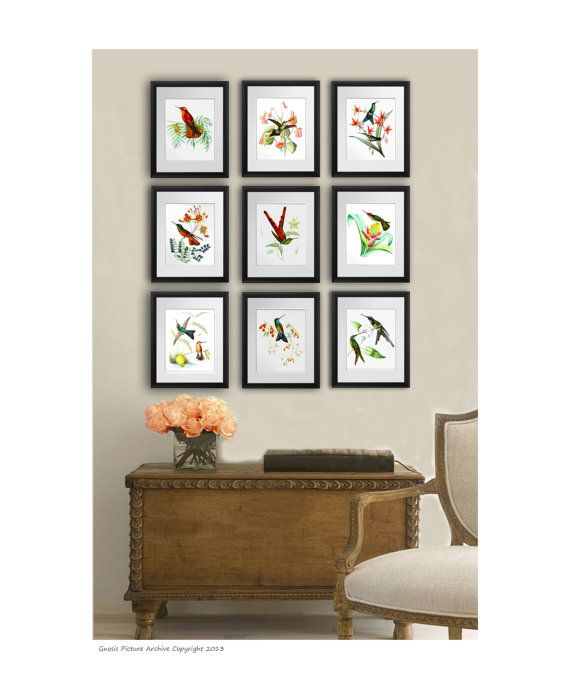 Hummingbird Art Prints Set Of 9 Unframed Etsy Wall Art Etsy Hummingbird Wall Art Etsy Wall Art Bird Wall Decor