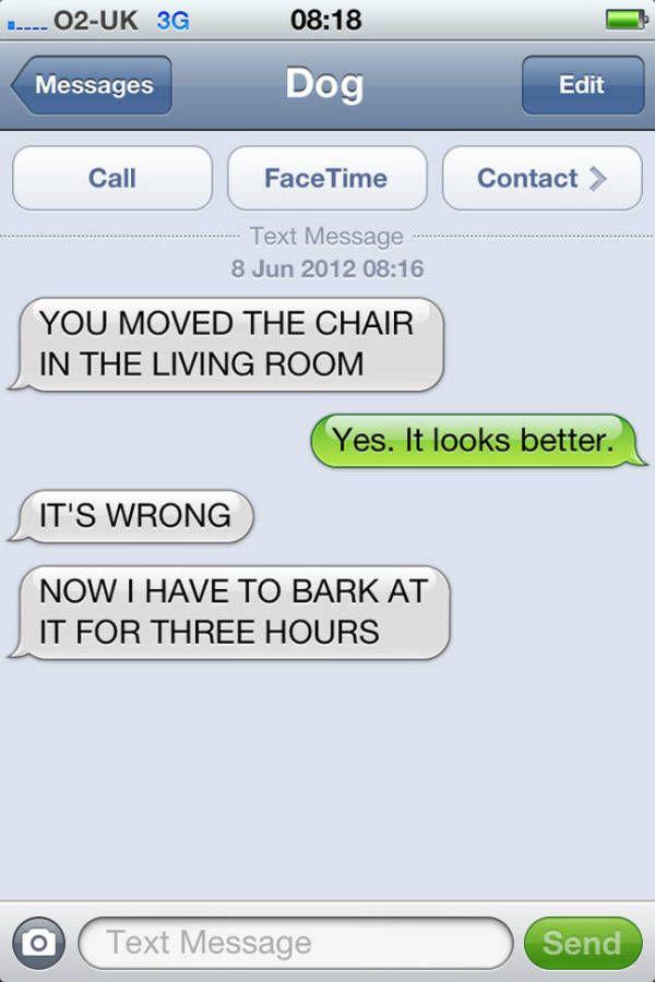 Dog texts funny