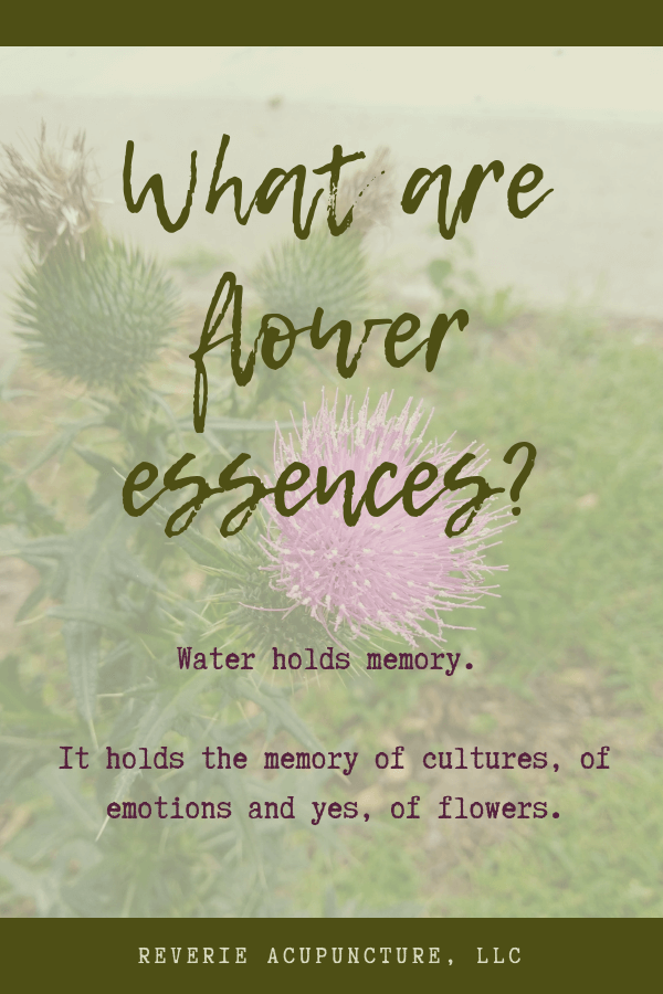 What Are Flower Essences Reverie Acupuncture Flower Essences Flower Essences Remedies Acupuncture
