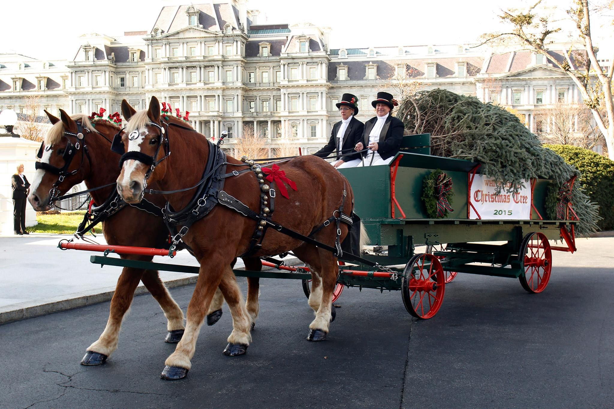 These 7 Horse Drawn Carriage Rides In Virginia Are Pure Magic ...