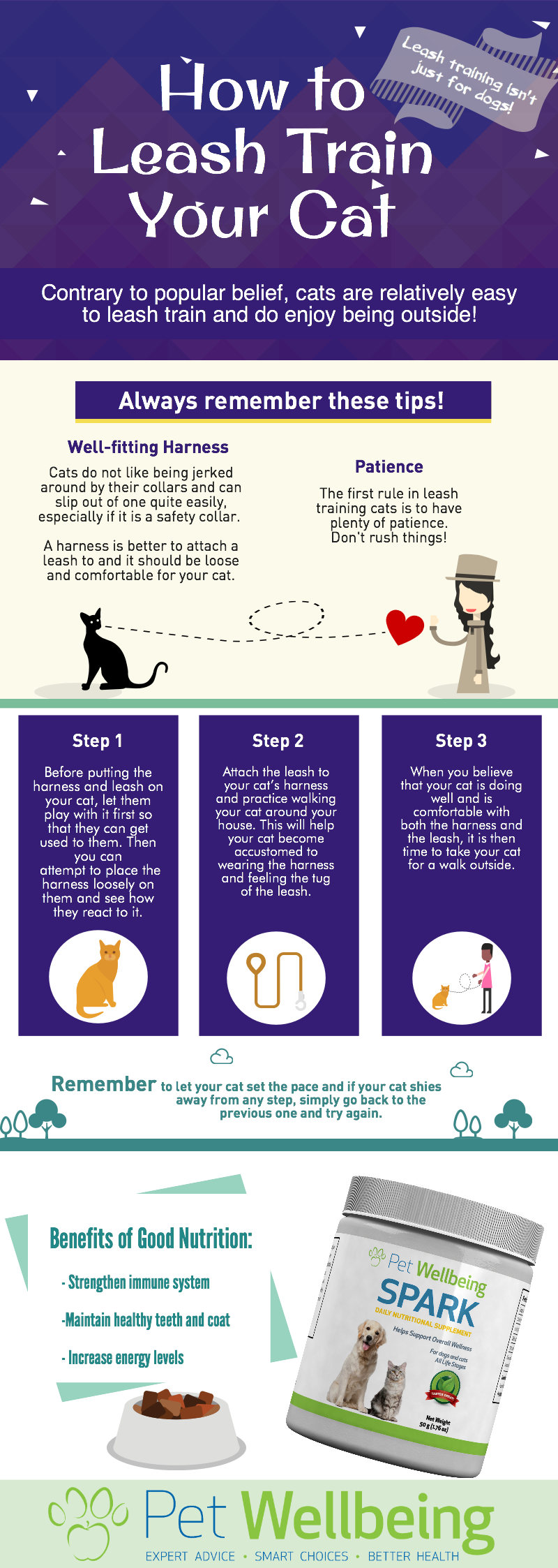 How To Leash Train Your Cat Infographic By Pet Wellbeing Cat Leashtraining Petwellbeing Cattrain Cathealth Leash Training Cat Infographic Cat Health